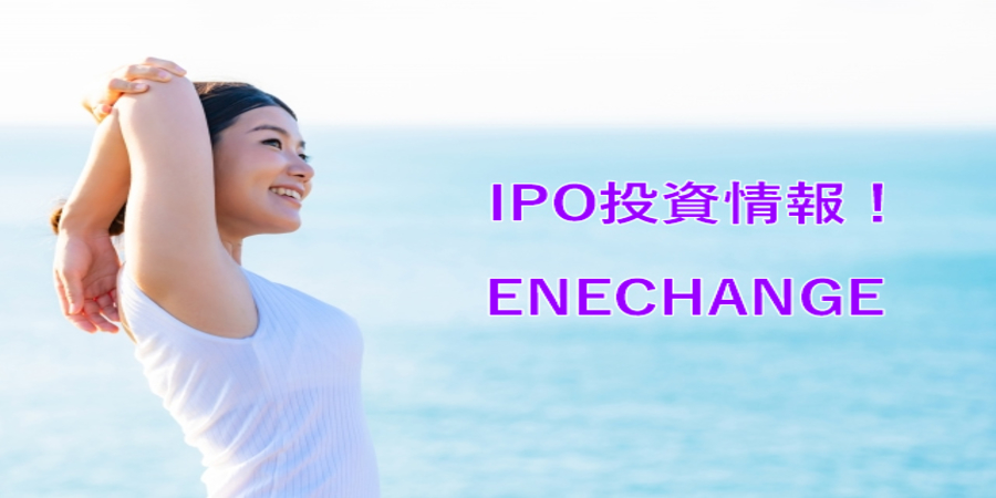 Japanese energy switching startup Enechange files for IPO